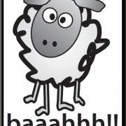 sheep21.png